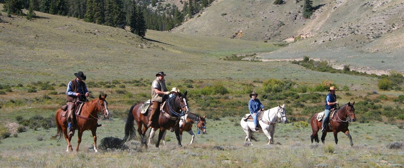Rough Riders At Elk Mountain Ranch