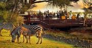 Wildlife at The Royal Livingstone by Anantara