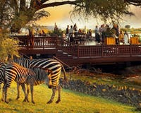 Wildlife at The Royal Livingstone by Anantara