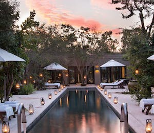 Pool at Royal Malewane Kruger National Park