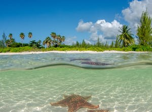 9 inspiring Cayman Islands holiday experiences