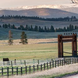 Luxury Montana Ranch holidays