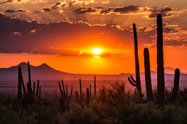 The Ultimate Southwest Road-trip