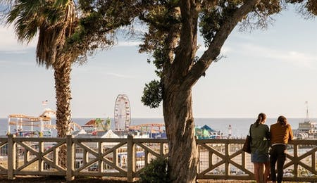 view of santa monica pier from palisades park