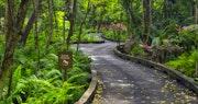 Take part in the boardwalk trail at The St Regis Bahia Beach Resort, Puerto Rico