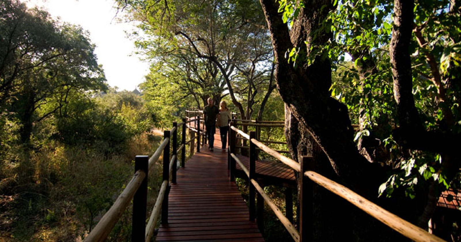 Forest Walkway at Sanctuary Sussi & Chuma