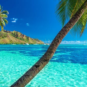 luxury holidays to tahiti