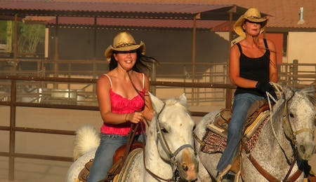 Team Penning At White Stallion Ranch, Arizona