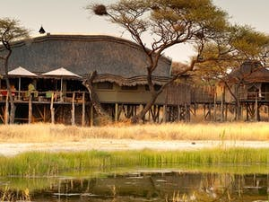 Tree Top Camp at Onguma Private Game Reserve