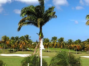 Golf Course at Bwa Chik Hotel & Golf, Guadeloupe