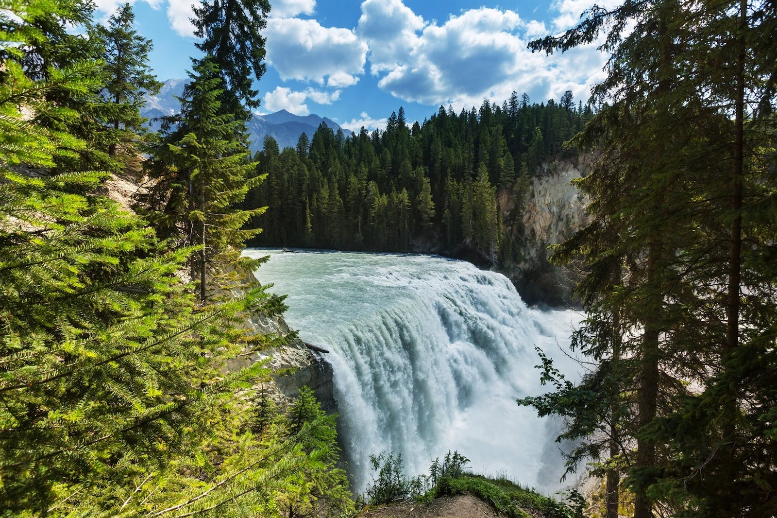 wapta falls yoho national park british columbia