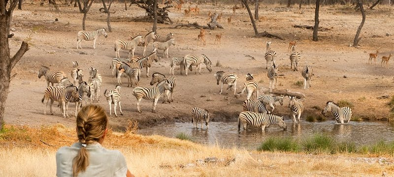 Watering hole at Onguma Private Game Reserve