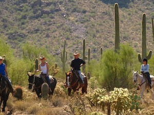 Horse Riding At White Stallion Ranch, Arizona