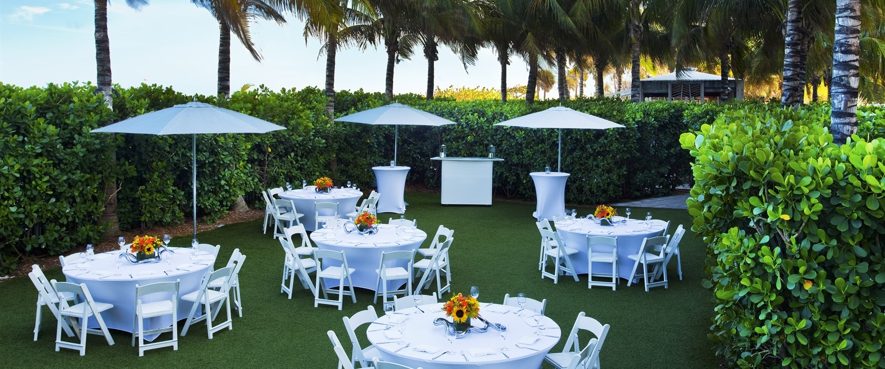 The lawn at W South Beach, Miami