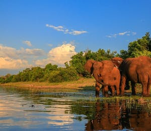 luxury zimbabwe holidays